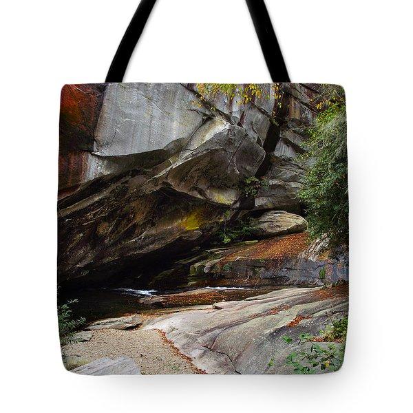 Birdrock Waterfall Tote Bag
