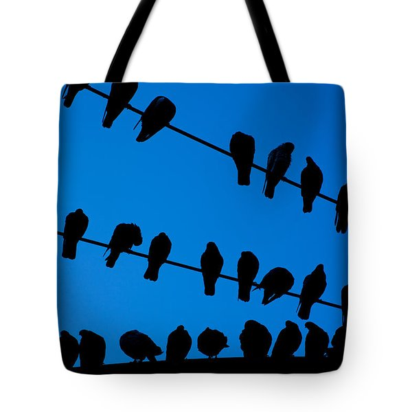 Birds On A Wire Tote Bag by Karol Livote