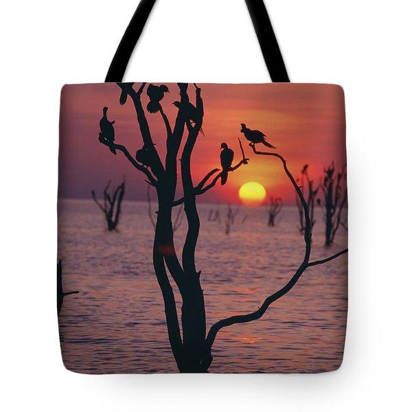 Birds On Tree, Lake Kariba At Sunset Tote Bag by Axiom Photographic