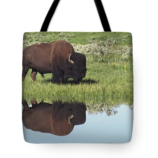 Bison Bison Bison On Grassy Meadow With Tote Bag by David Ponton