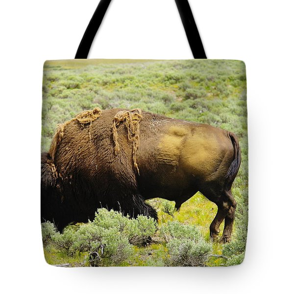Bison Tote Bag by Jeff Swan