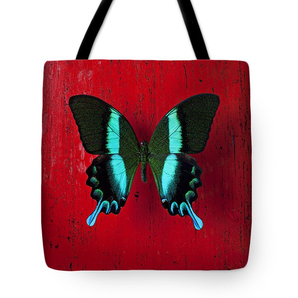 Black And Blue Butterfly  Tote Bag by Garry Gay