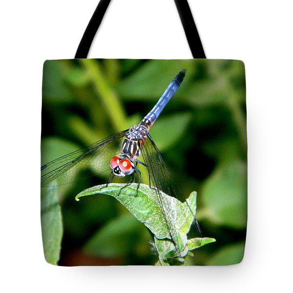 Tote Bag featuring the photograph Black And Blue Tail Dragonfly by Ester  Rogers