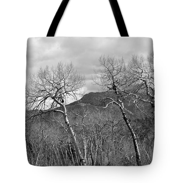 Tote Bag featuring the photograph Black And White Aspen by Dorrene BrownButterfield