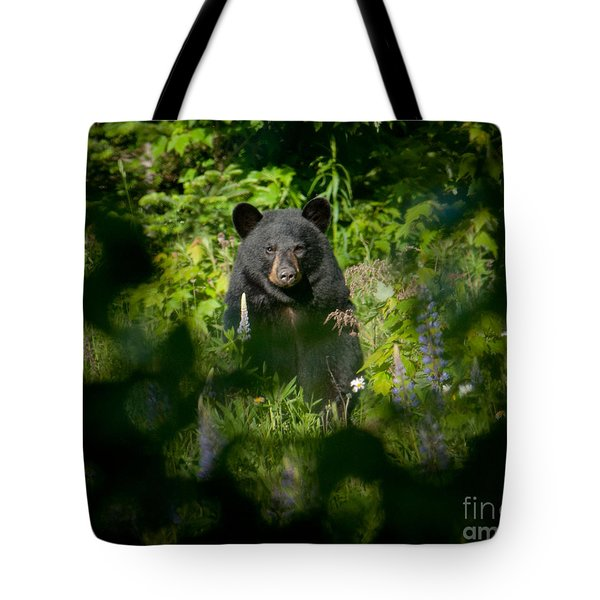Tote Bag featuring the photograph Black Bear by Alana Ranney