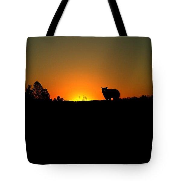 Black Bear Sunset Tote Bag