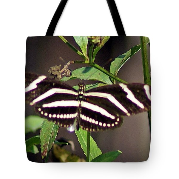 Black Butterfly Tote Bag by Joe Faherty