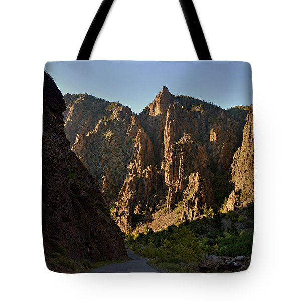Black Canyon  Tote Bag by Marty Koch