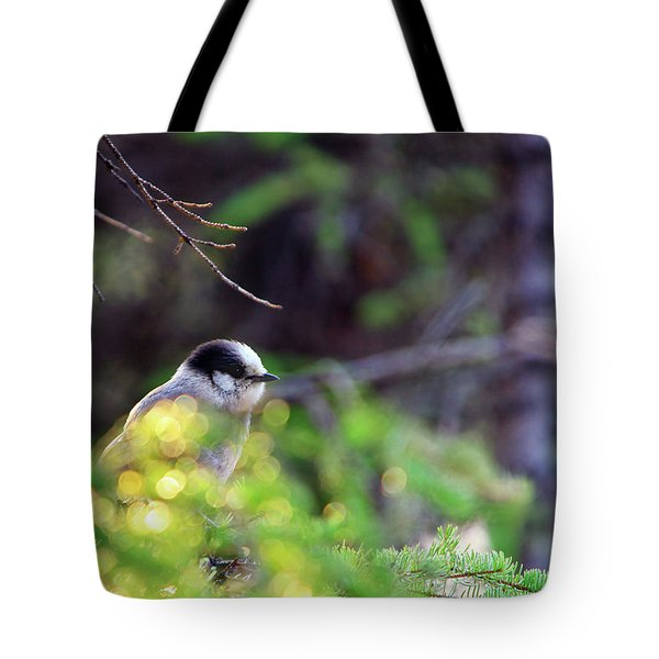Black Capped Chicadee Tote Bag
