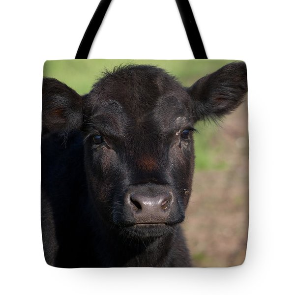 Tote Bag featuring the photograph Black Cow by Randy Bayne
