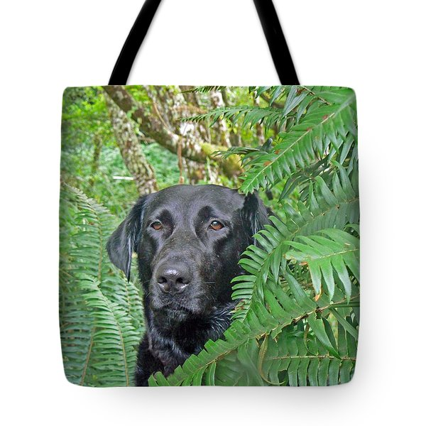 Black Dog In The Ferns Tote Bag