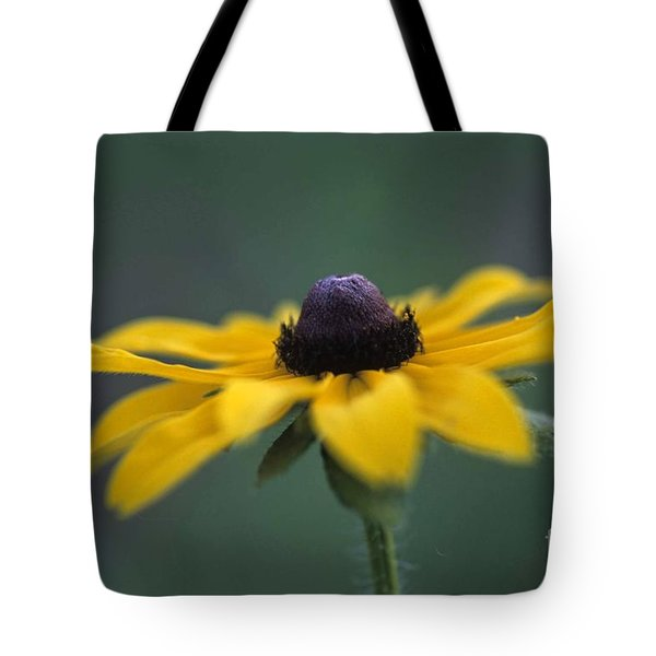 Tote Bag featuring the photograph Black Eye Susan by Alana Ranney