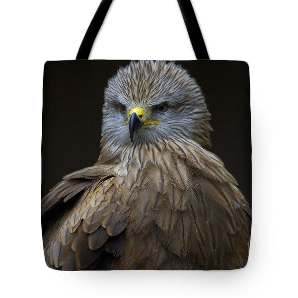 Black Kite 1 Tote Bag by Heiko Koehrer-Wagner