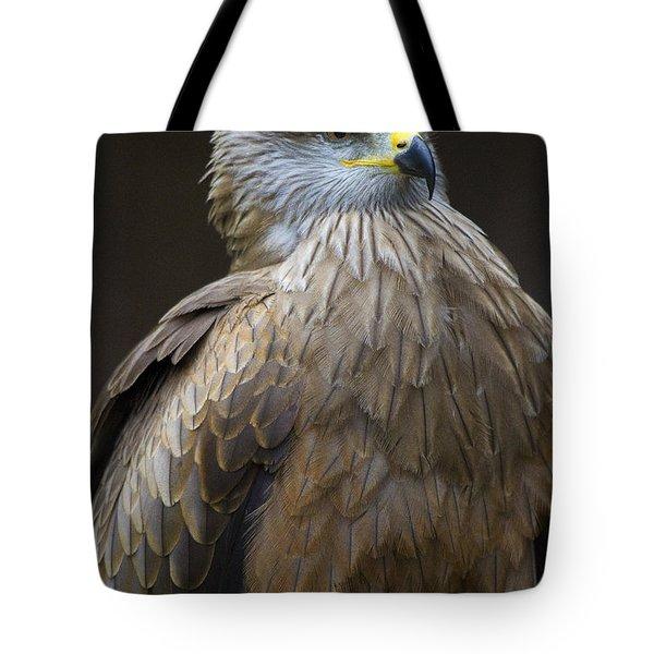 Black Kite 4 Tote Bag by Heiko Koehrer-Wagner