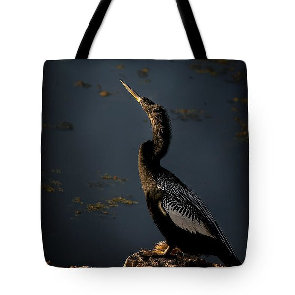 Tote Bag featuring the photograph Black Light by Steven Sparks