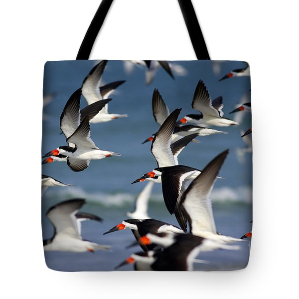 Black Skimmers Flock Tote Bag by Clarence Holmes