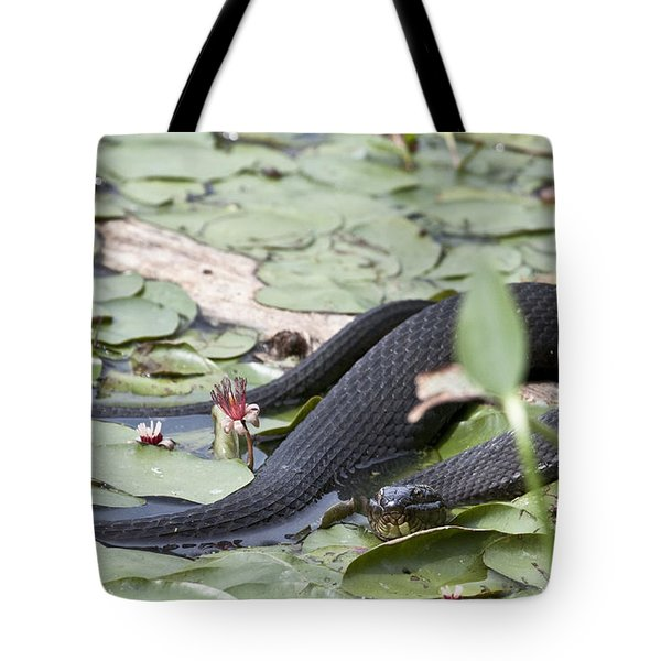 Snake In The Lillies Tote Bag by Jeannette Hunt