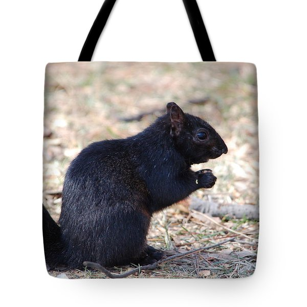 Black Squirrel Of Central Park Tote Bag by Sarah McKoy