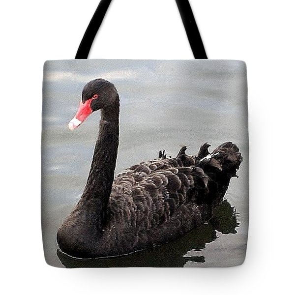 Tote Bag featuring the photograph Black Swan by Katy Mei