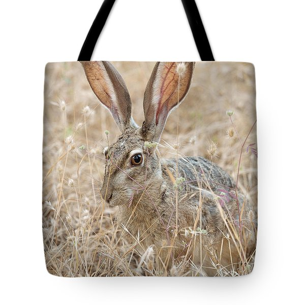 Tote Bag featuring the photograph Black-tailed Hare by Doug Herr