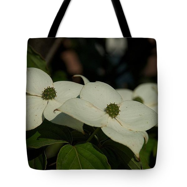 Tote Bag featuring the photograph Blanket by Joseph Yarbrough