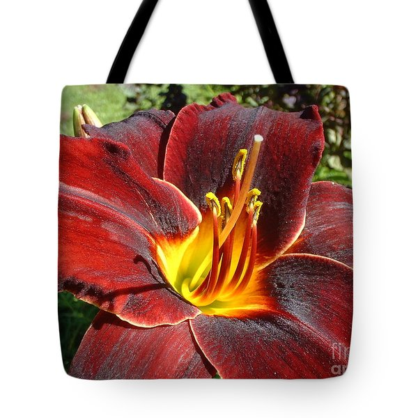 Bleeding Beauty Tote Bag by Mark Robbins