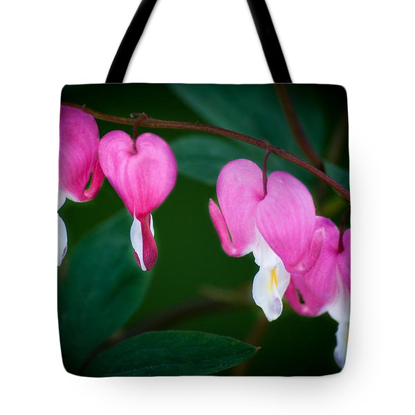 Tote Bag featuring the photograph Bleeding Hearts 002 by Larry Carr