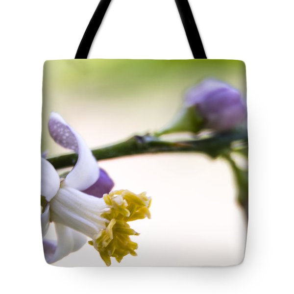 Bloom Tote Bag by Marta Cavazos-Hernandez