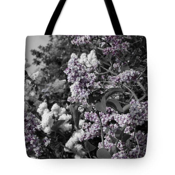 Blooms Tote Bag by Colleen Coccia