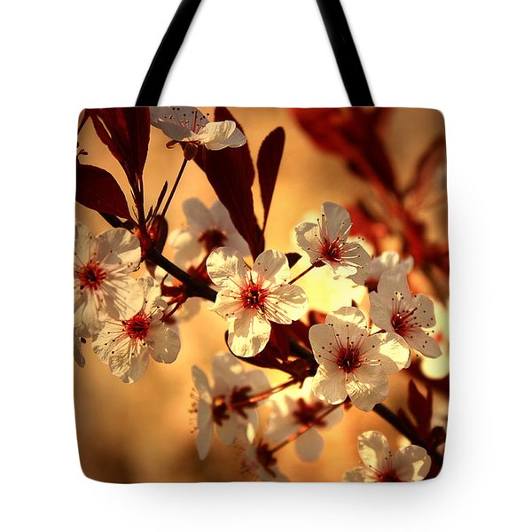 Blossoms 3 Tote Bag by Mikki Cucuzzo