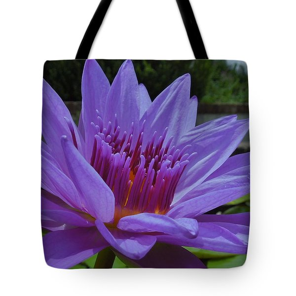 Blue And Purple Lotus Flower Tote Bag