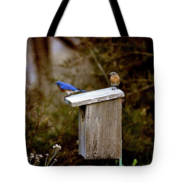 Blue Birds Tote Bag by Todd Hostetter