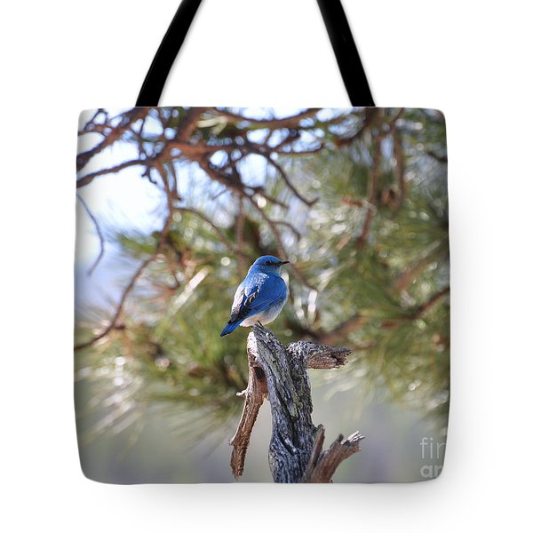 Blue Boy Tote Bag by Dorrene BrownButterfield