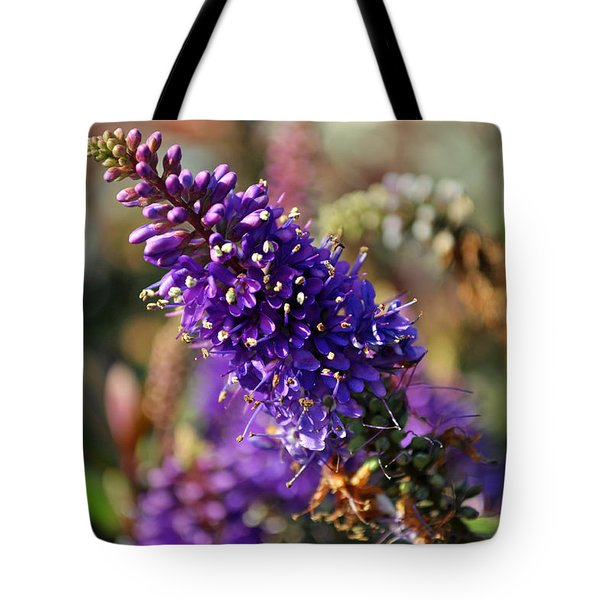 Tote Bag featuring the photograph Blue Brush Bloom by Tikvah's Hope