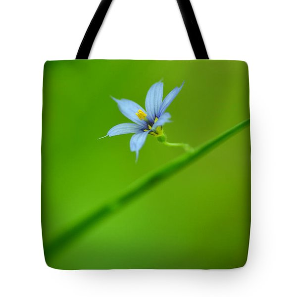 Tote Bag featuring the photograph Blue-eyed Grass by JD Grimes