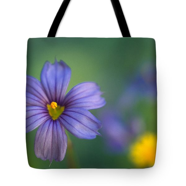 Blue Eyed Grass Tote Bag by Kathy Yates