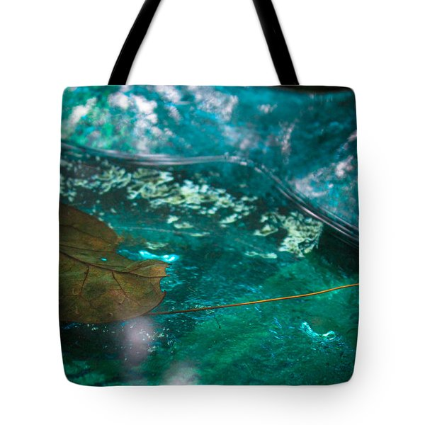Blue Glass Bird Bath Tote Bag