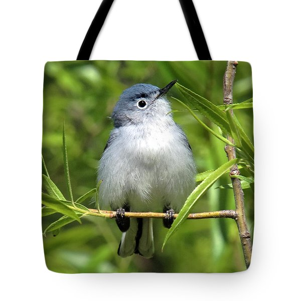 Tote Bag featuring the photograph Blue-gray Gnatcatcher Dsb147 by Gerry Gantt