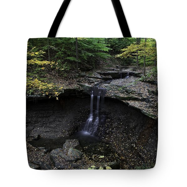 Blue Hen Falls Tote Bag by Dale Kincaid