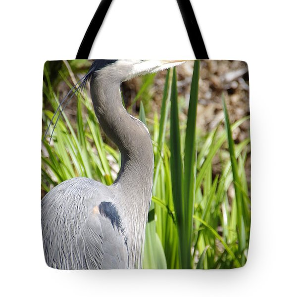 Tote Bag featuring the photograph Blue Heron by Marilyn Wilson