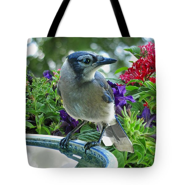 Tote Bag featuring the photograph Blue Jay At Water by Debbie Portwood