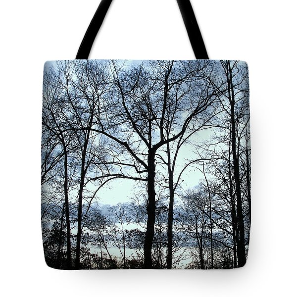 Tote Bag featuring the photograph Blue Mirage by Pamela Hyde Wilson