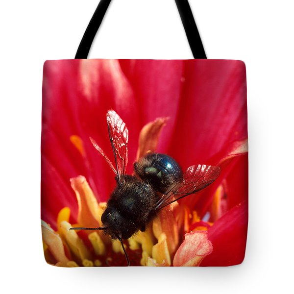 Blue Orchard Bee Tote Bag by Scott Bauer