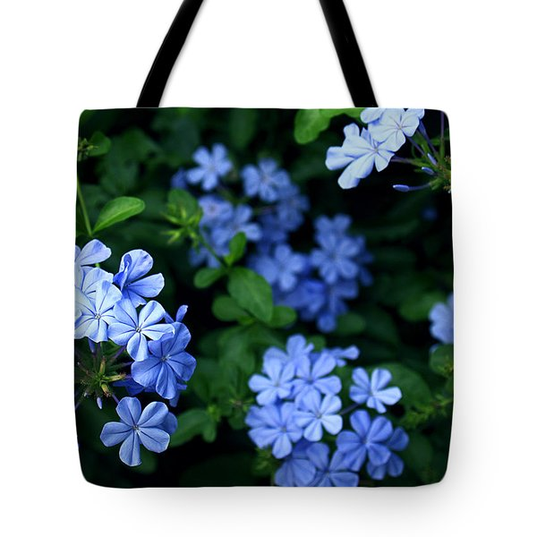 Tote Bag featuring the photograph Blue Plumbago by Barbara Middleton
