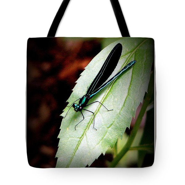 Blue Tote Bag by Priscilla Richardson