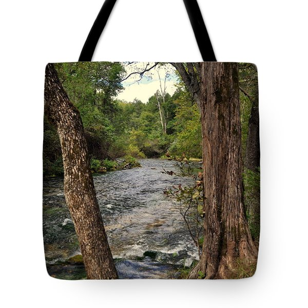 Tote Bag featuring the photograph Blue Spring Branch by Marty Koch