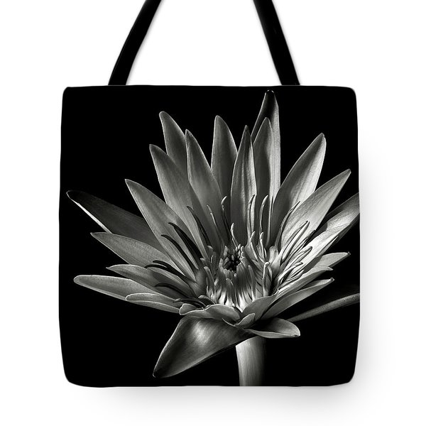 Tote Bag featuring the photograph Blue Water Lily In Black And White by Endre Balogh