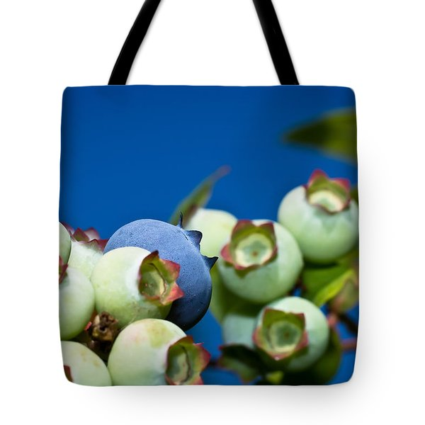 Blueberries And Sky Tote Bag