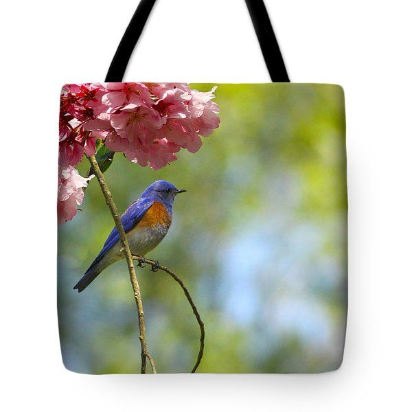 Bluebird In Cherry Tree Tote Bag