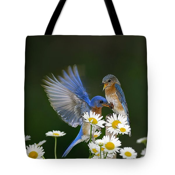 Tote Bag featuring the photograph Bluebirds Picnicking In The Daisies by Randall Branham